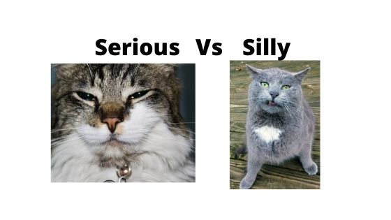 Serious vs silly D&D